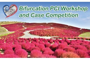 Bifurcation PCI Workshop and Case Competition, 30 Jun 2018
